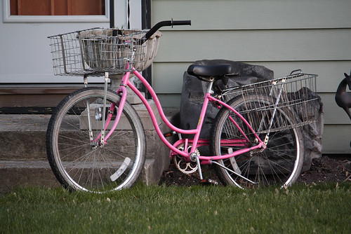 Pink Bike 12 | by Peladon