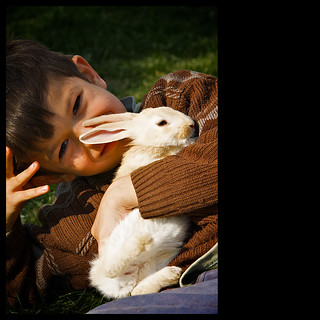 boy with rabbit | by khrawlings
