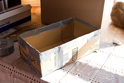 DIY Solar Oven: interior box | by nikaboyce