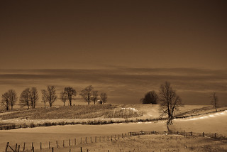 Farm | by Phiddy1