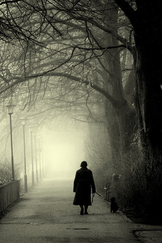 A Foggy Day at Pildammsparken in Malmö_0019 | by paralecitam