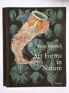 Ernest Haeckel65 | by Neville Trickett