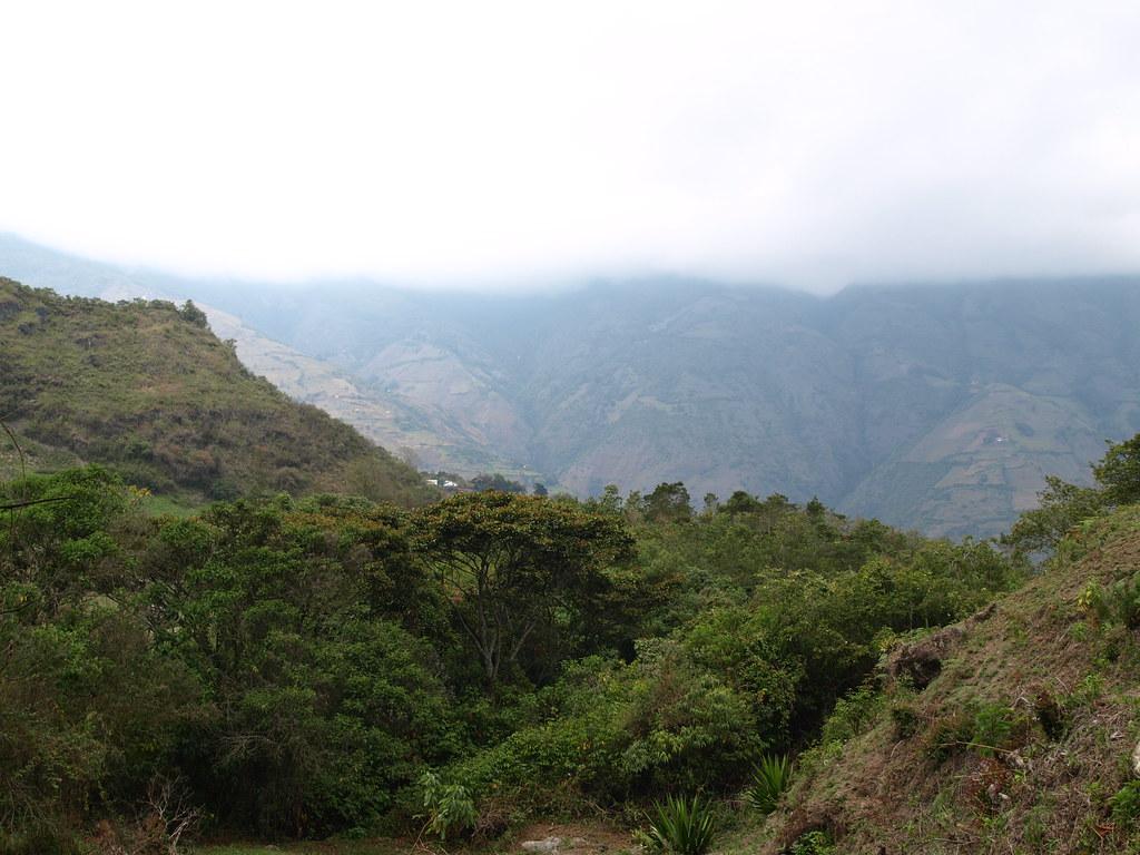Niquitao Andes Venezuela