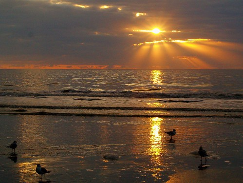 Hilton Head Sunrise | by **Lili**