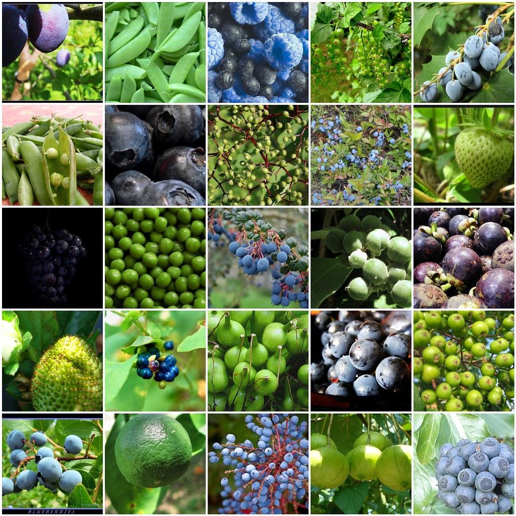 blue green fruits vegetables früchte und gemüse in bla flickr