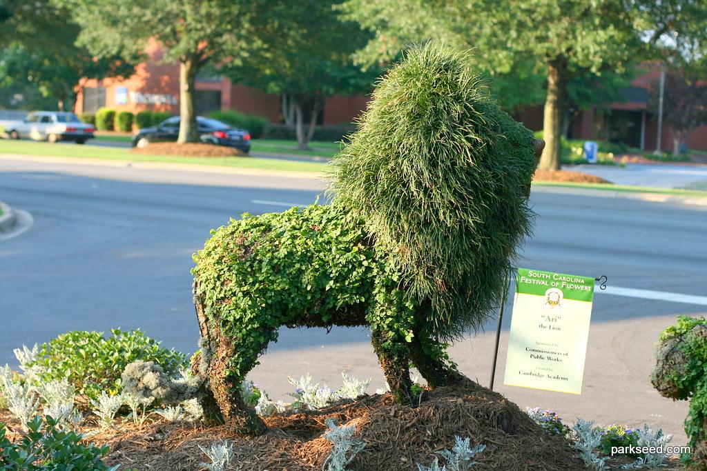 Lion topiary photo - Rick Kobylinski photos at pbase.com