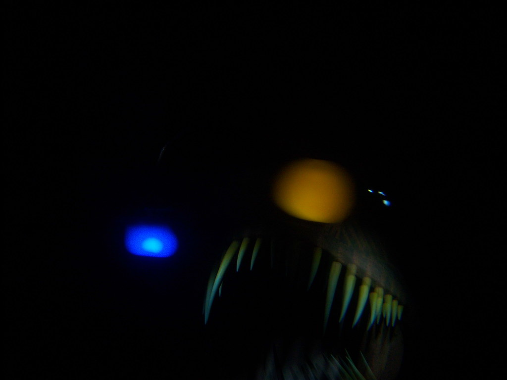 Scary Angler Fish on Finding Nemo Submarine Voyage | Flickr for angler fish finding nemo ride  5lp5wja