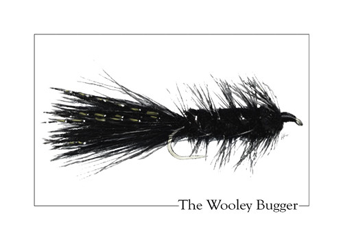 The Wooley Bugger | by lesOfieldstream
