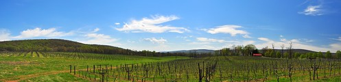 Breaux Winery Pano | by matthew_culbertson