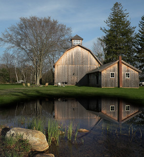 """Barn Reflections"" 