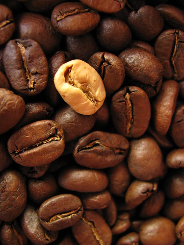 Coffee beans | by jphilipg