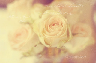 Nourishing the Senses ♥ | by Kelly J. Petersen (Photography)