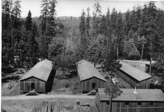 View of bunk houses at Oakridge CCC camp F-25, Willamette National Forest | by OSU Special Collections & Archives : Commons