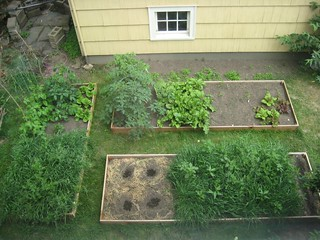 Backyard Garden - Aerial View | by CaitlinD