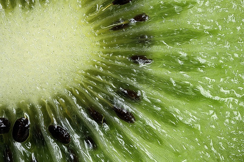 Kiwi fruit phart | by Lord V