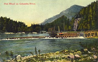 Fish wheel on the Columbia River | by OSU Special Collections & Archives : Commons