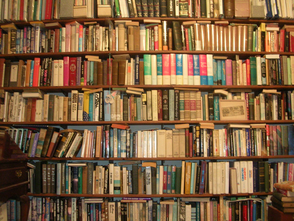 Wall of Books | wall of books in a friend's house in Michiga ...