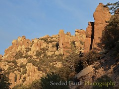 Pinnacles in Chiricahua | by bo mackison