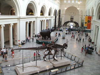 Field Museum, Chicago | by travelontheside