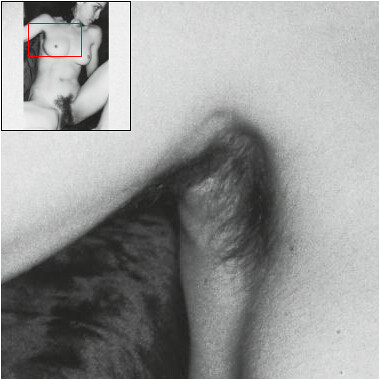 A look at Madonna's Hairy Parts - 3: her armpit | by houbi