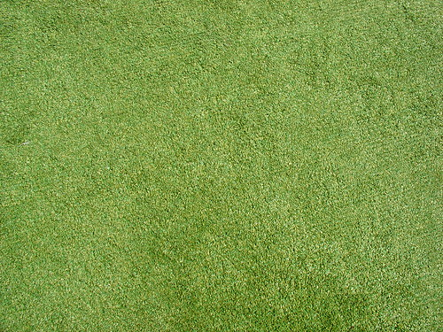 grass1 | If you use this texture, please credit me with a
