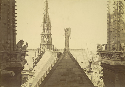 Notre Dame de Paris. View from Tower with Chimeras and Gargoyles | by Cornell University Library