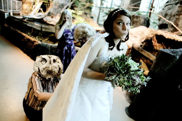 Owl Wedding Dress