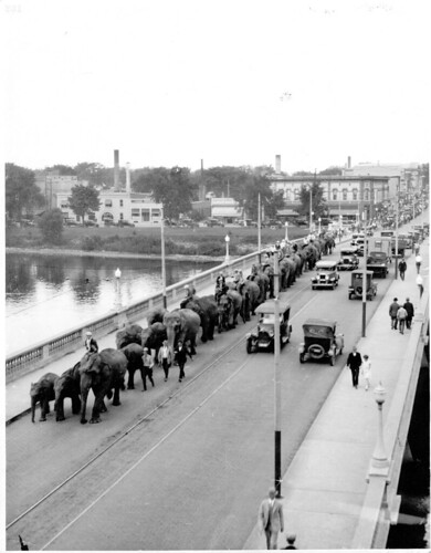 Ringling Bros. - elephants on bridge | by McMillan Memorial Library (Historical Collections)