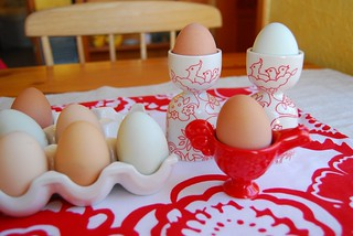 egg cups | by heylucy