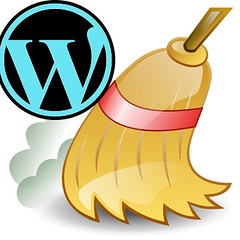 cleaning wp | by datacharmer