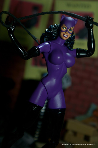 Knightfall Catwoman | by Toy Photography Addict