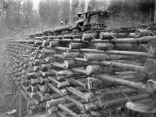 Crib trestle on the Columbia and Nehalem Valley Railroad | by OSU Special Collections & Archives : Commons