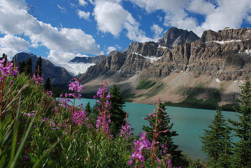 Canadian Rockies Bow Lake | by Harry2010