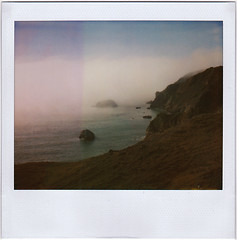 coast | by Leah Reich