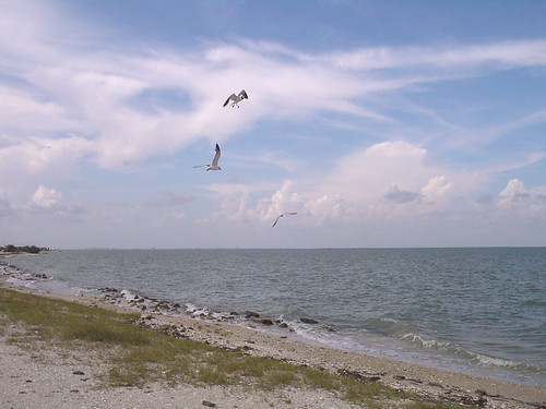 Magnolia beach port lavaca tx the texas gulf coast is for Port lavaca fishing