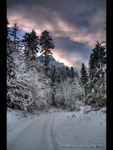 Winterimpression | by mcPhotoArts™