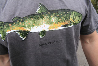 Bull Trout Shirt | by mattstansberry