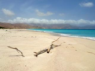 Untouched ~ Socotra Island, Yemen Yemen