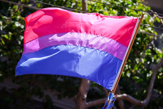 The bisexual pride flag | by salanki
