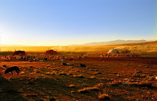 Paryang Nomads camp Tibet | by reurinkjan