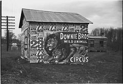 [Posters covering a building near Lynchburg to advertise a Downie Bros. circus] (LOC) | by The Library of Congress