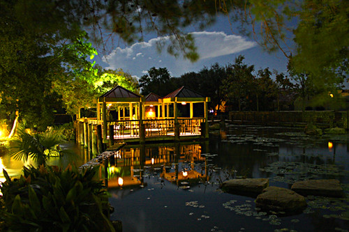 ... Hill Country Water Garden At Night | By Wyojones