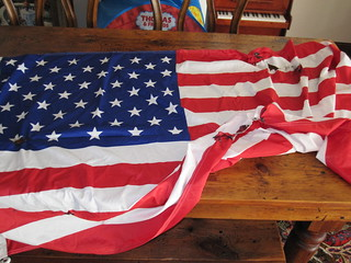 Burned American Flag Found in the Park | by flgirlinsydney