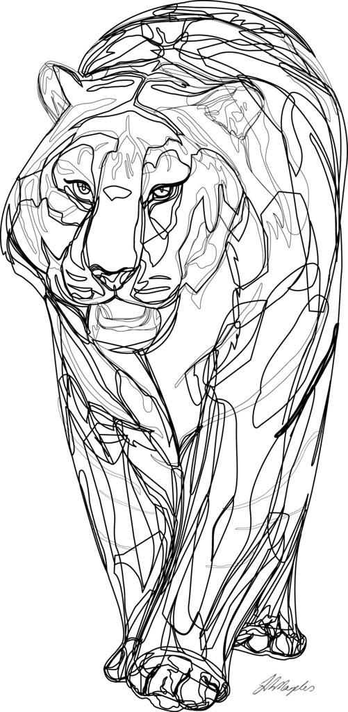 Perfect ... Vector Tiger, Line Drawing   Jan 09 | By Fatboygotsick