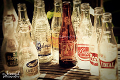 PROJ. 365: Antique Bottles | by jennyL_photos