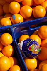 Oranges -Picos de Europa | by The Hungry Cyclist