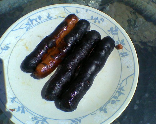 burnt to a crisp hot dogs..Grill works 2 good | Tried new /o ...