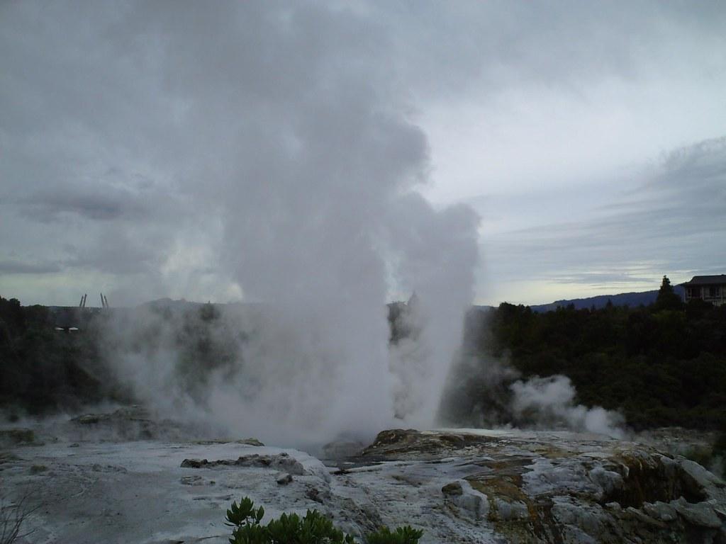 Geyser eruption at Te Puia in Rotorua, New Zealand