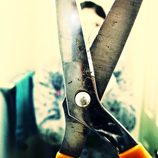125:365 - butchered | by cavale