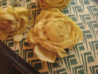 dried out ranunculus | by the snail and the cyclops